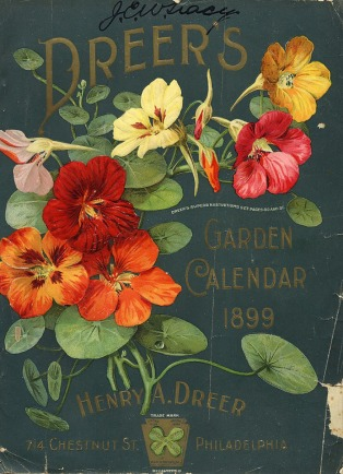 vintage-packaging-flower-seed-packets-from-thes_icnfe_4