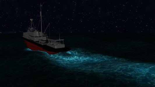 Bioluminescence-at-sea-23409