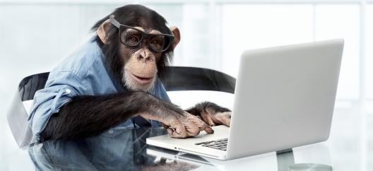 istock-18586699-monkey-computer
