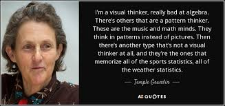 temple grandin pattern thinker